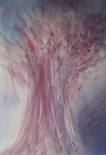 La Tuya el árbol de Saturno